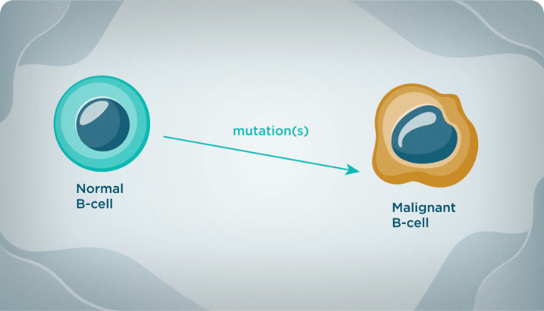 In people with CLL, normal B cells mutate into abnormal, unhealthy cells.
